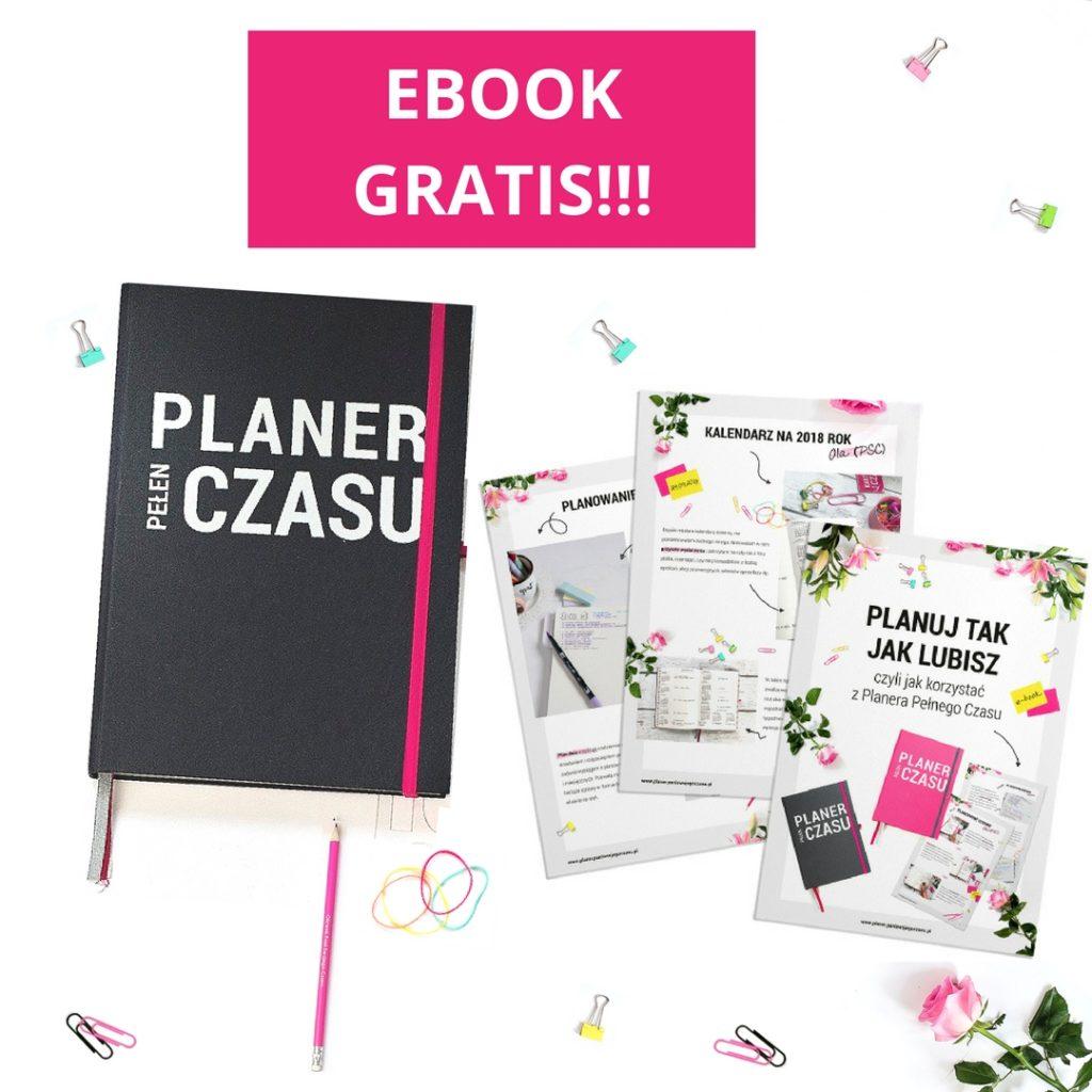 Planer Pani Swojego Czasu - idealny do bullet journal