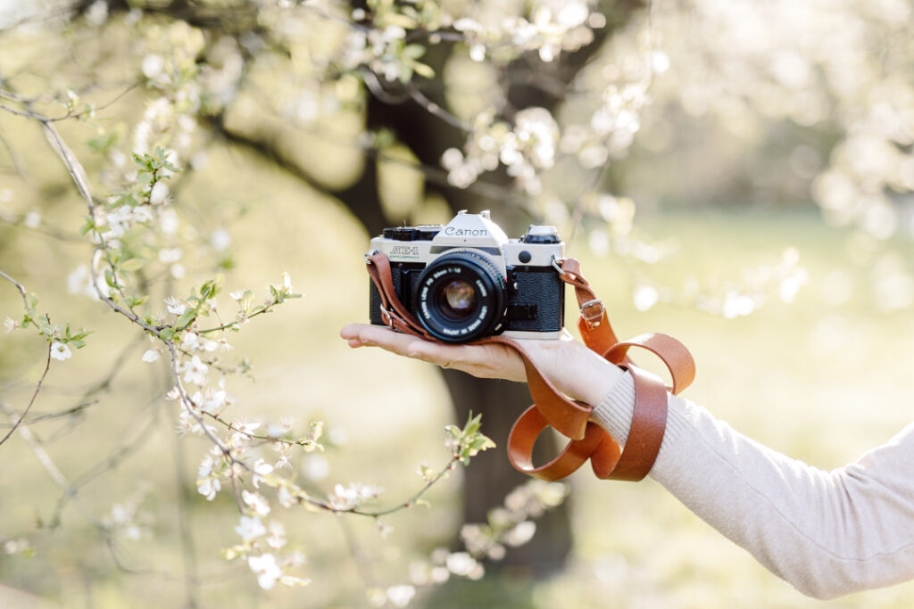 Aparat na dłoni kobiety. W tle kwitnące drzewa.